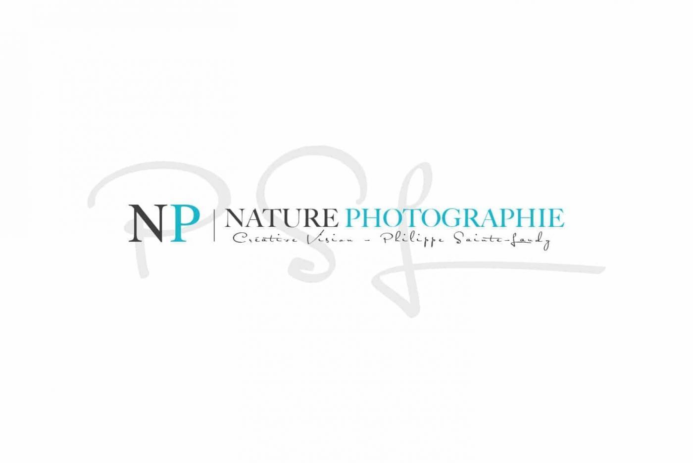 Page d'accueil du site Nature Photographie