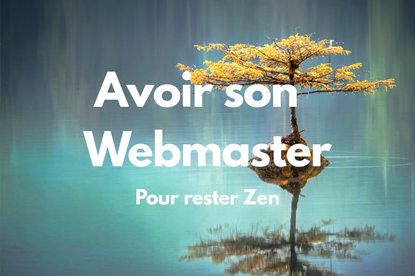 Webmaster-WordParess